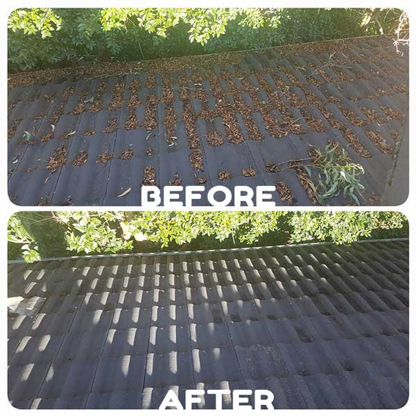 gutter_vacuum_cleaning_sydney